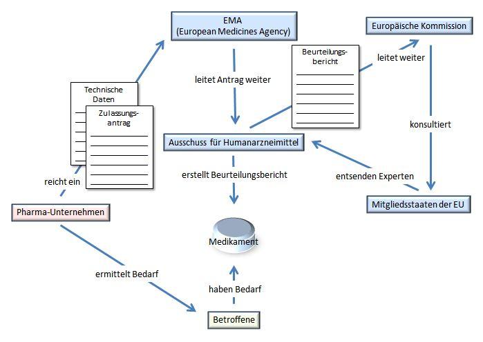 Übersichtsschema zum zentralen Zulassungsverfahren